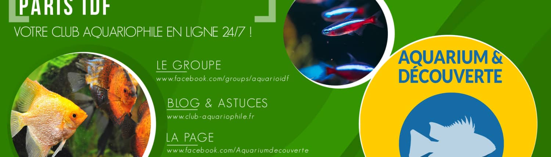 Aquarium & Découverte - Club aquariophile en ligne !