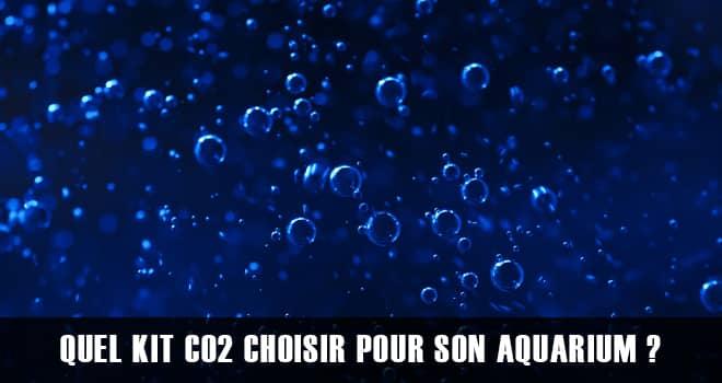 Quel kit CO2 choisir pour son aquarium ? Artisanal ou Industriel ?